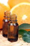 Fruit essence Stock Image