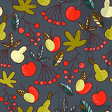 Fruit et baies Images stock