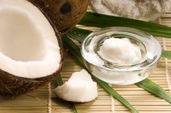 Fruit et pétrole de noix de coco Image libre de droits