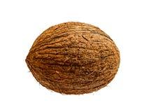 Fruit exotique de noix de coco d'isolement sur le fond blanc Photo stock