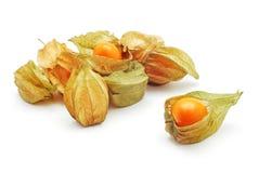 Fruit exotique de Phisalis image libre de droits