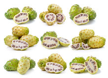 Fruit exotique, fruits de Noni Photographie stock libre de droits