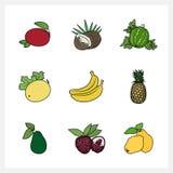Fruit exotique tropical illustration libre de droits