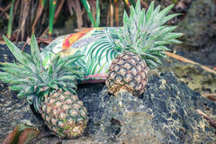 Fruit exotique tropical frais d'ananas sur la plage Île de Parardise de Bali Sac de plage Photo libre de droits