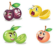 Fruit faces. A mixed fruit faces illustration vector illustration