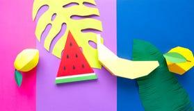 Fruit fait de papier Fond color? tropiques Configuration plate illustration stock