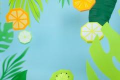Fruit fait de papier Fond pour une carte d'invitation ou une félicitation tropiques photographie stock libre de droits