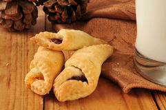 Fruit filled pastry wraps Royalty Free Stock Image