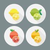 Fruit. Flat design. Round icons. Vector illustration Royalty Free Stock Photo