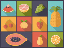 Fruit Flat Icons Vector Illustration Stock Image
