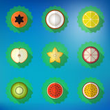 Fruit Flat Vector Icon Set. Include apple,  lemon, papaya, star Royalty Free Stock Images
