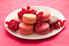 Fruit flavored macarons with the berries Royalty Free Stock Photo