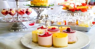 Fruit flavored soft pudding desserts on a table royalty free stock images