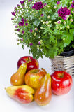 Fruit with flowers Royalty Free Stock Photo