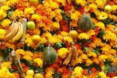 Fruit and flowers III Stock Photography
