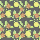 Fruit and flowers. Seamless fruit and flowers pattern on dark Stock Image