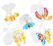 Fruit fly butterfly Royalty Free Stock Image