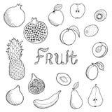 Fruit food graphic art set black white  illustration Stock Photo
