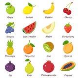 Fruit food icons set, isometric style. Fruit food icons set. Isometric illustration of 16 fruit food vector icons for web royalty free illustration