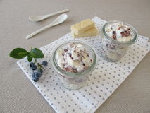 Fruit fool with blueberries Royalty Free Stock Images