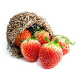 Fruit frais de fraises Photos libres de droits