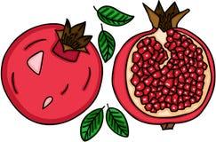 Fruit frais de grenade Photos libres de droits