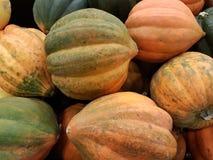 Fruit frais de la saison d'été dans le secteur et en parcs et dans les pelouses Images libres de droits