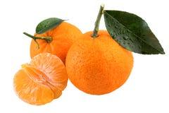 Fruit frais de mandarines d'isolement sur le blanc Photo libre de droits