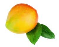 Fruit frais de mangue avec des feuilles de vert d'isolement sur le fond blanc Photographie stock