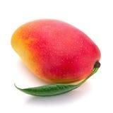 Fruit frais de mangue avec des feuilles de vert d'isolement sur le fond blanc Image libre de droits