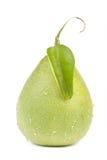 Fruit frais de pamplemousse avec la lame verte Images stock