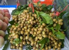 Fruit frais de wampee Image libre de droits