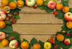 Fruit frame Royalty Free Stock Photography