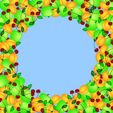 Fruit frame. Frame of fruit on a blue background in the form of a circle vector illustration