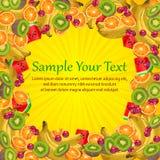 Fruit frame Stock Image