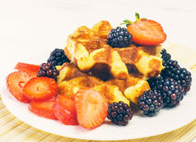 Fruit fresh breakfast with blueberries, waffle and milk Royalty Free Stock Photography