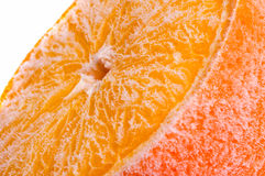 Fruit  frozen in ice Royalty Free Stock Photo