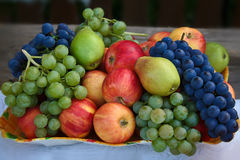 Fruit. S: apples, pears, grapes ... Gifts of Autumn. Table set with assorted Royalty Free Stock Photos