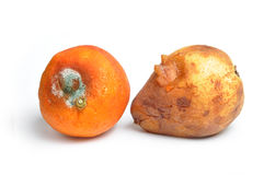 Fruit gâté Image libre de droits