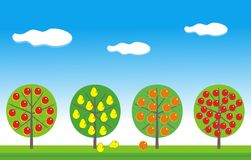 Fruit garden. Vector simple illustration of fruit trees - apple, destroying, orange, cherry - against green grass and the blue sky with clouds Royalty Free Stock Photo