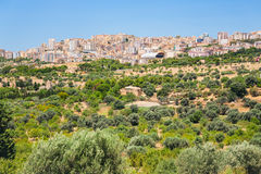Fruit gardens and view of Agrigento town Royalty Free Stock Photos