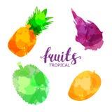 Fruit geplaatste getrokken waterverfvlekken en vlekken met een nevelananas, mango, durian draakfruit, De ge?soleerde vector van d stock illustratie