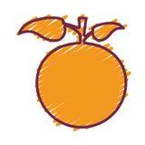 Fruit gezond voedsel stock illustratie