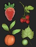Fruit graphic of strawberry, raspberry, peach, and grape. Realistic fruit graphic art of strawberry, raspberry, peach, and grape. For icons, clip art, label stock illustration