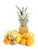 Fruit Group stock image
