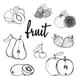 Fruit hand drawn contour Stock Image