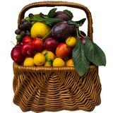 Basket with cherry plum and plums. Royalty Free Stock Image