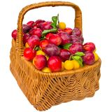 Basket with cherry plum and plums. Royalty Free Stock Photo