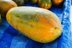 Fruit healthy, Ripe papaya. Royalty Free Stock Images