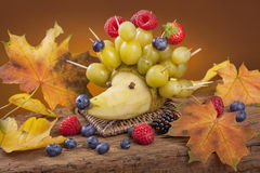 Fruit hedgehog Stock Photo